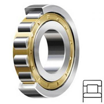 1.181 Inch | 30 Millimeter x 2.441 Inch | 62 Millimeter x 0.787 Inch | 20 Millimeter  CONSOLIDATED BEARING NU-2206E M C/3  Cylindrical Roller Bearings