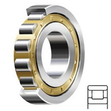 5.512 Inch   140 Millimeter x 9.843 Inch   250 Millimeter x 1.654 Inch   42 Millimeter  CONSOLIDATED BEARING N-228 M C/3  Cylindrical Roller Bearings