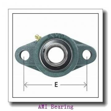 AMI MUCHPL206-18CW  Hanger Unit Bearings